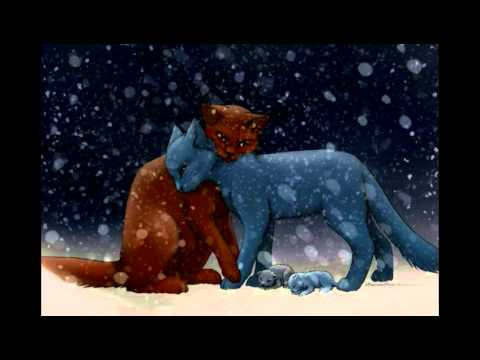 warrior cats oakheart x bluestar youtube