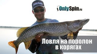 Сильные стороны поролоновых рыбок  Ловля в корягах  #OnlySpin