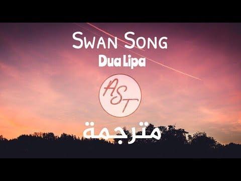 Dua Lipa - Swan Song | Lyrics Video | مترجمة
