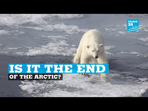 Is it the end of the arctic?