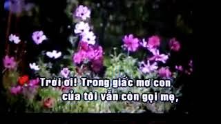Vu An Ma Nguu -Song Ca Voi -Trang Thach