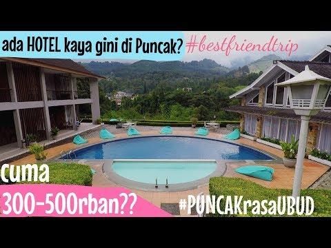 vlog-|-rekomendasi-hotel-300-500rban-di-puncak-bogor---hotel-ariandri-|-#bestfriendtripekaelisa