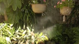 Mosquito Control Using Misting in Yanchep WA