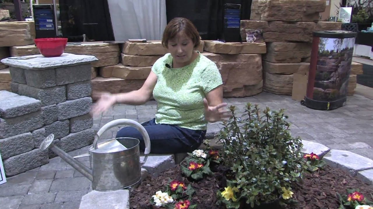 Garden Plant Care How To Create An Above Ground Organic Vegetable