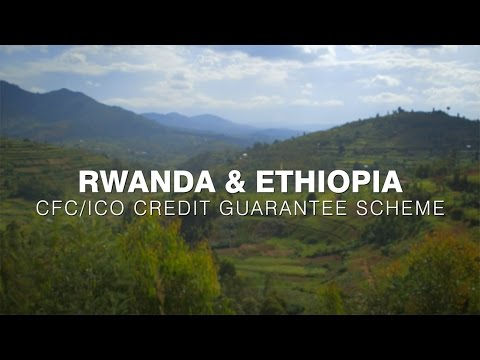 Coffee Credit Guarantee Scheme in Rwanda & Ethiopia 2
