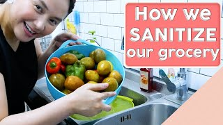 Quick and Easy Way to Sanitize your Groceries [DIY SANITATION]