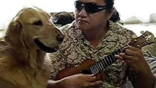 タフワフワイ ukulele solo