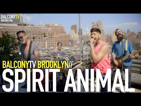 SPIRIT ANIMAL - REGULAR WORLD (BalconyTV) - SPIRIT ANIMAL - REGULAR WORLD (BalconyTV)