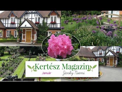 Januári teendők a kertben | Kertész Magazin