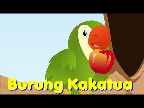 Burung Kakatua | Lagu Anak TV | The Cockatoo In Bahasa Indonesia