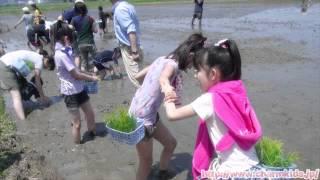http://www.charmkids.jp/ 長嶋るみ、三井ゆめ、松下みさ。 小6&中1の3...