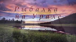 Бешеный клев карася озеро Уелги Челябинская область