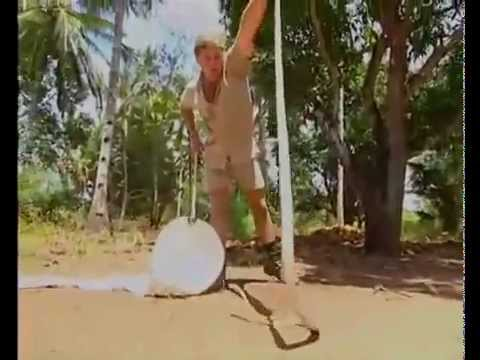 Steve Irwin Vs. Black Mamba