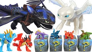How to train your dragon 3 giant fire breathing Toothless and Mystery mini dragons! Go! #DuDuPopTOY