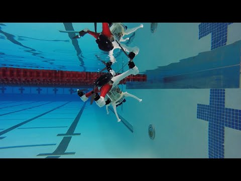 Check Out The Loon Copter: A Flying Drone That Swims Underwater!