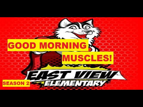 Good Morning Muscles S2 Episode 2: Teach Physical Education Gym at Home Kids Fitness Workout