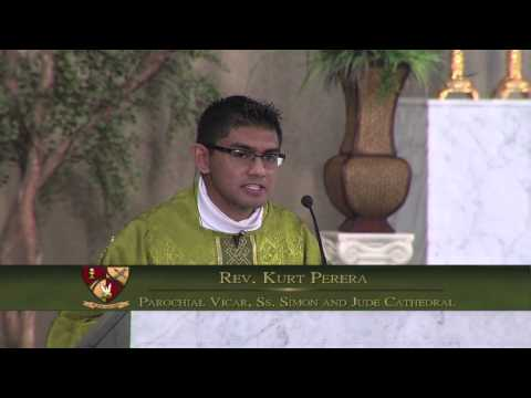 Homily for the 5th Sunday in Ordinary Time, Feb. 9, 2014