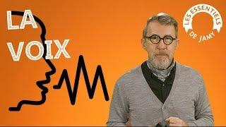 LA VOIX, COMMENT CA FONCTIONNE - Les essentiels de Jamy