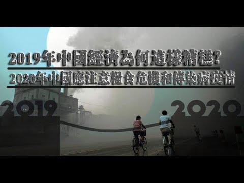 夏业良:2020年中国将是政治经济动荡的一年