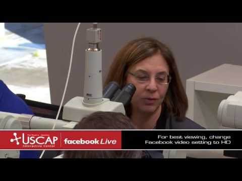 USCAP: Wendy Frankel's Gastrointestinal and Liver Pathology