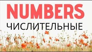 Numbers - всё о ЧИСЛАХ в английском: как говорить номера телефнов, автобусов, домов. Числительные