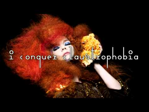 Björk - Crystalline (karaoke + lyrics)