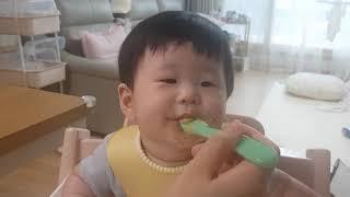 찹쌀당근비타민닭죽 먹방(아기 이유식 먹방)