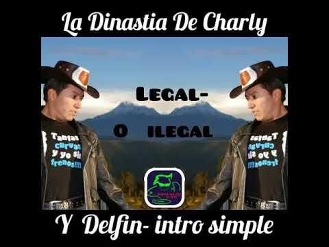 La Dinastia de Charly Y Delfin Legal o Ilegal intro simple