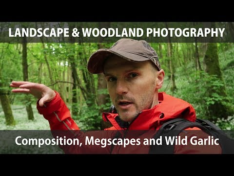 Composition, Megscapes and Wild Garlic - Landscape & Woodland Photography