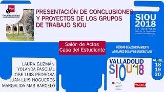 CONCLUSIONES Y PROYECTOS DE LOS GRUPOS DE TRABAJO SIOU