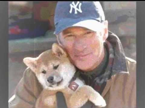 Canción triste Hachiko from YouTube · Duration:  2 minutes 11 seconds