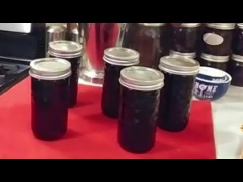 how-to-can-homemade-grape-jelly-~-yes-you-can-can!