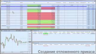 ProTrader 3.1: Информеры. Торговые операции