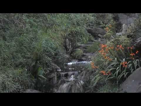 Little waterfall at Dunquin / Dún Chaoin, Glanlick, Co. Kerry Ireland