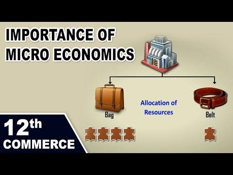 Importance  of Micro Economics - Home Revise 12th Std. Maharashtra Board Commerce Economics