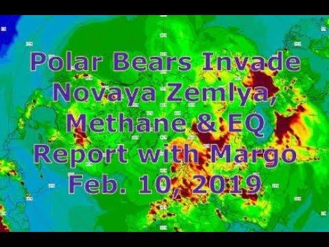 Polar Bears Invade Novaya Zemlya, Methane & EQ Report with Margo (Feb. 10, 2019)