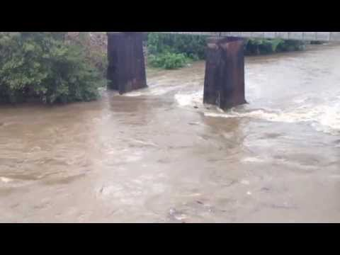 St Helens Creek Cyclone Dylan