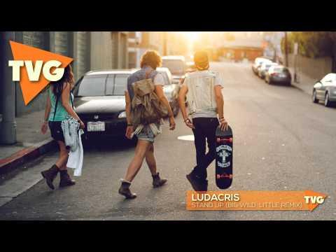 Ludacris - Stand Up (Big Wild Remix)