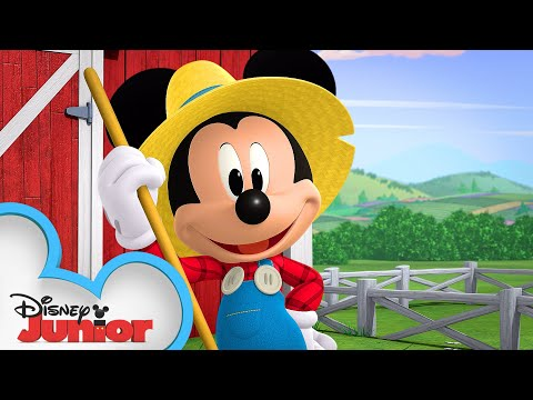 Mickey's Tricky Tractor! 🚜 | Mickey Mouse Hot Diggity Dog Tales | Disney Junior