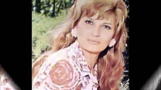 Silvana Armenulić S