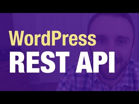 wordpress rest api tutorial real examples