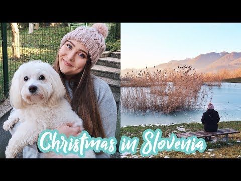Making Potica & Choking on Rakija | Christmas in Slovenia