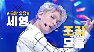 [크로스진/세영] ★7주년 기념★ 데뷔부터 작년까지 세영 컴백 무대 모음