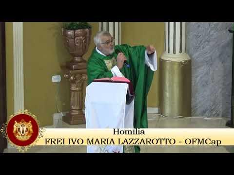 HOMILIA DOMINICAL DO 14° DOMINGO DO TEMPO COMUM, FREI IVO MARIA LAZZAROTTO
