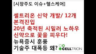 [시장주도 이슈+헬스케어]셀트리온 신약 개발/ 12개 …