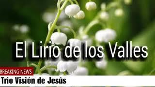 TRIO VISIÓN DE JESÚS - EL LIRIO DE LOS VALLES