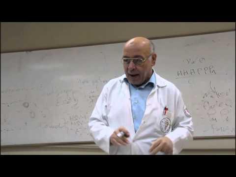 Virology Lecture 4 ( Enveloped DNA viruses - herpetoviridae 2 )