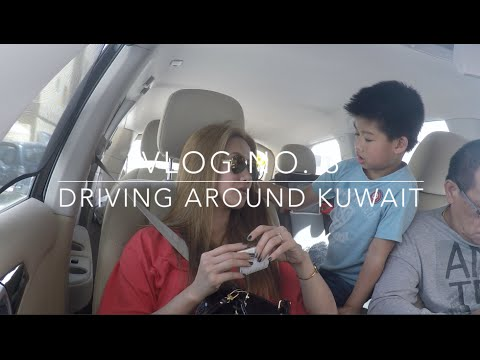 Vlog No. 3: The Gate Mall, Shopping, Shake Shack, Driving Around Kuwait