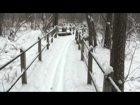 CROSS-COUNTRY SKIING PIGEON CREEK COUNTY PARK, Ottawa County, Michigan