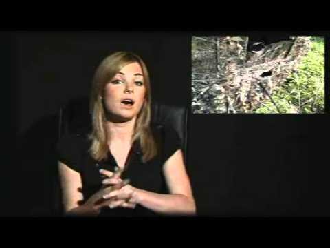 Photographytv.tv Show 5 - Full Version